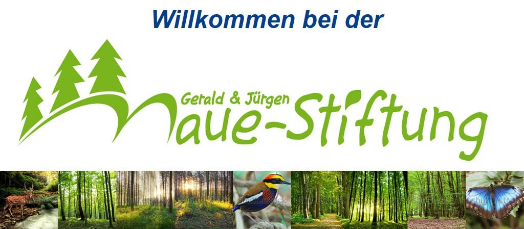 Gerald und Jürgen Maue-Stiftung